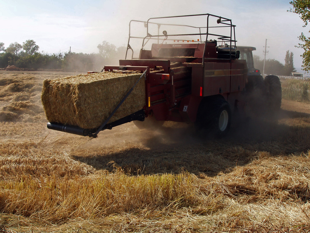 Weed-free Rice Straw for Wildfire Area Erosion Control Activities