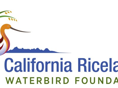 Waterbird Foundation gains official status as charitable organization