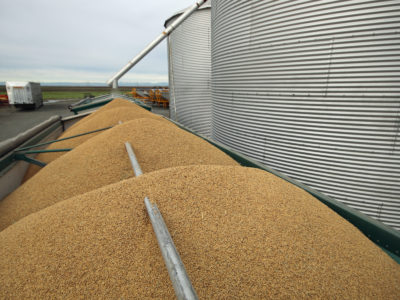 What you need to know about Farm-Saved Seed for 2018