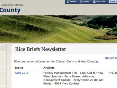 Latest UCANR Rice Briefs Newsletter now available