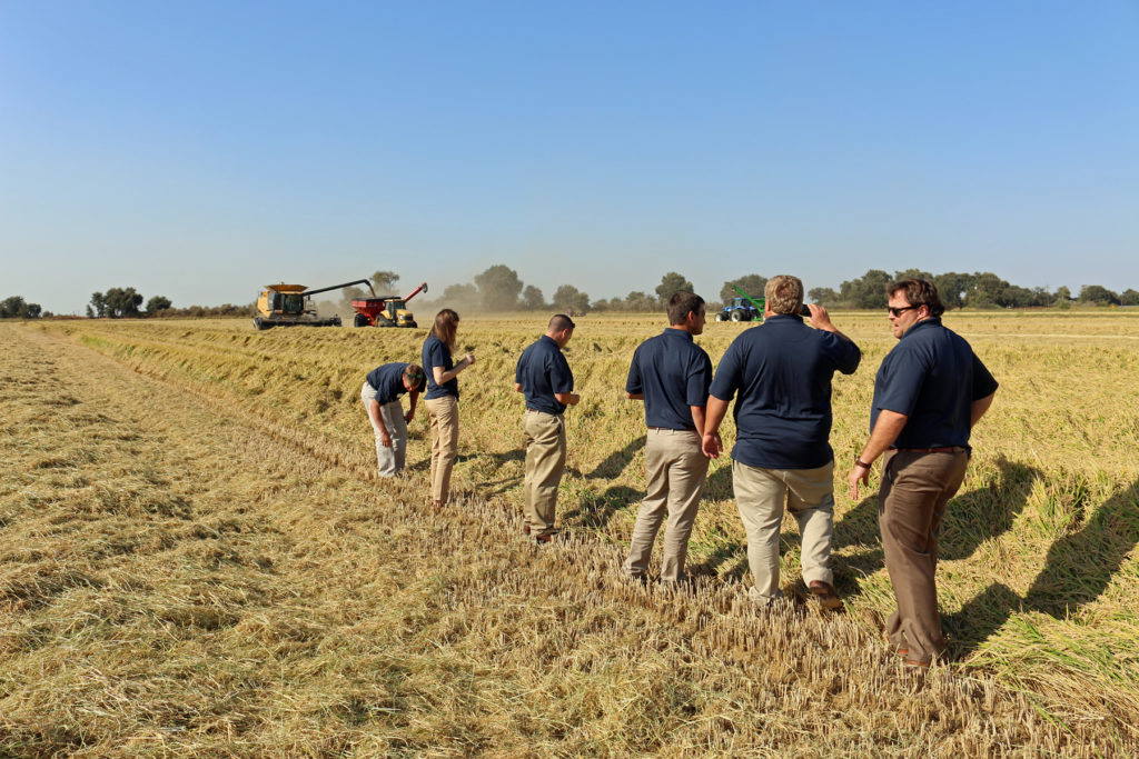 Application Period underway for 2020 Rice Leadership Program