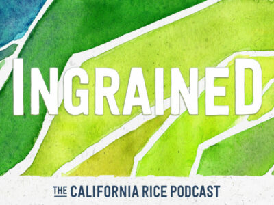 California Rice Podcast launches