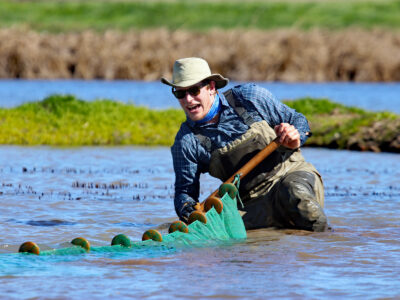 CRC Pilot Salmon Project Yields Great Results