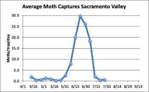 graph: Average Moth Captures in sacramento valley 4/1/2020 through 7/30/2020