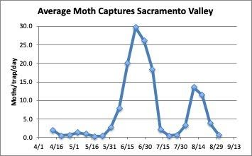 chart: average moth captures in the sacramento valley - april through august